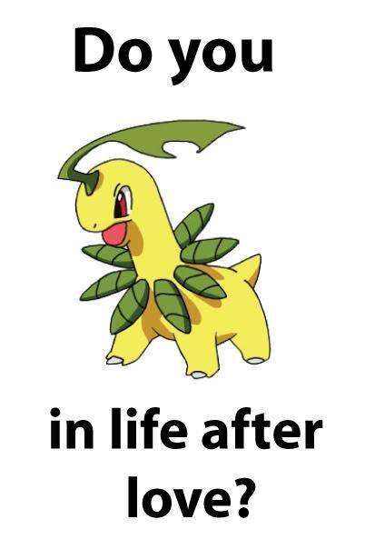 jokes Funny pokemon