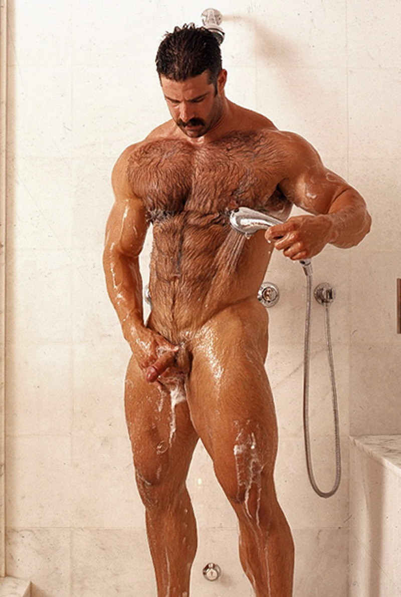 muscle Gay bears hairy