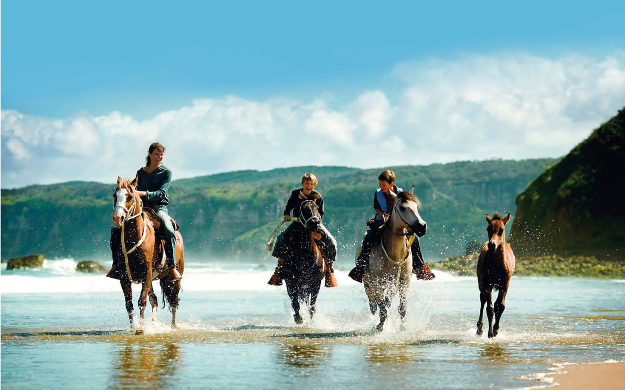 adults young Adventure for holidays
