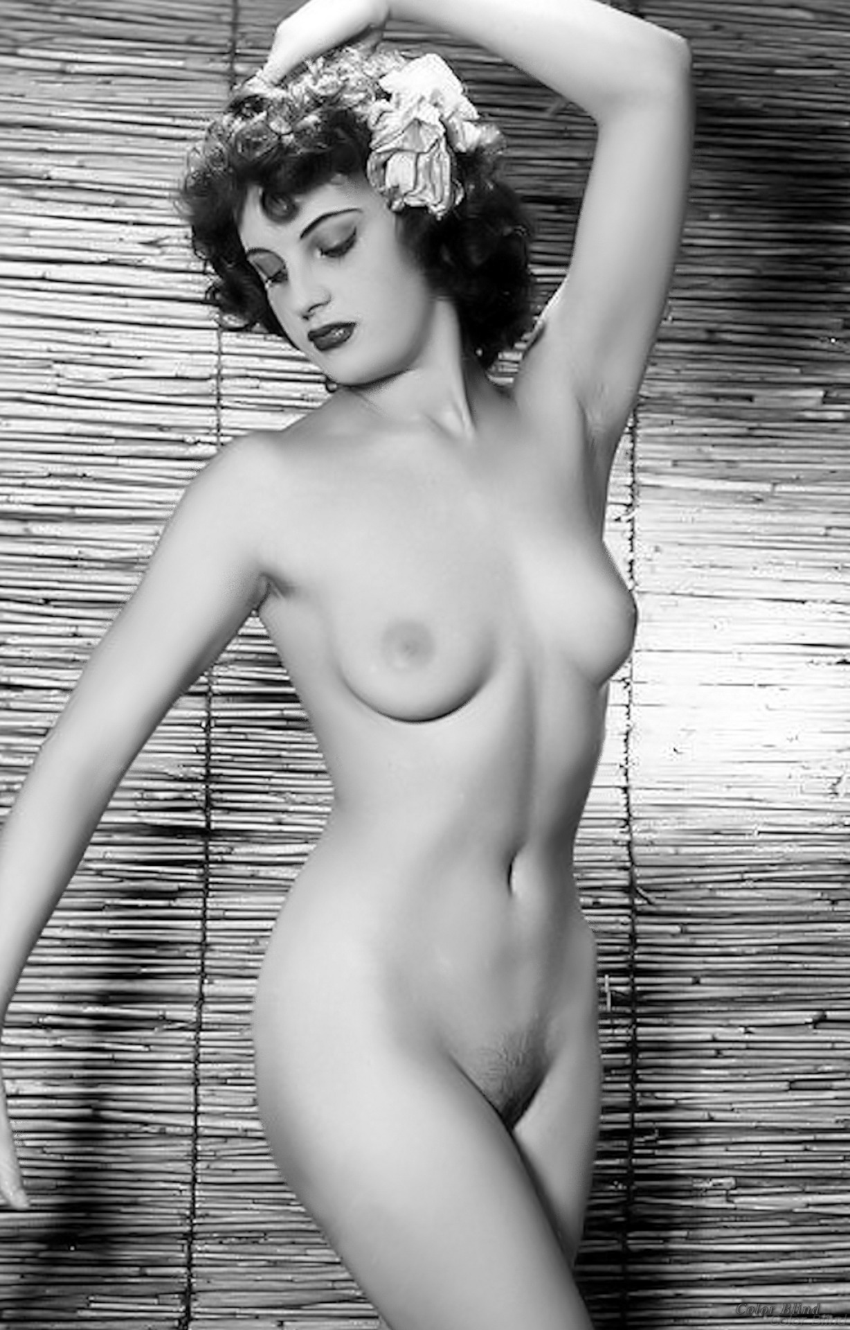 Images Showing For Free -Vintage Nude Pinups-8333