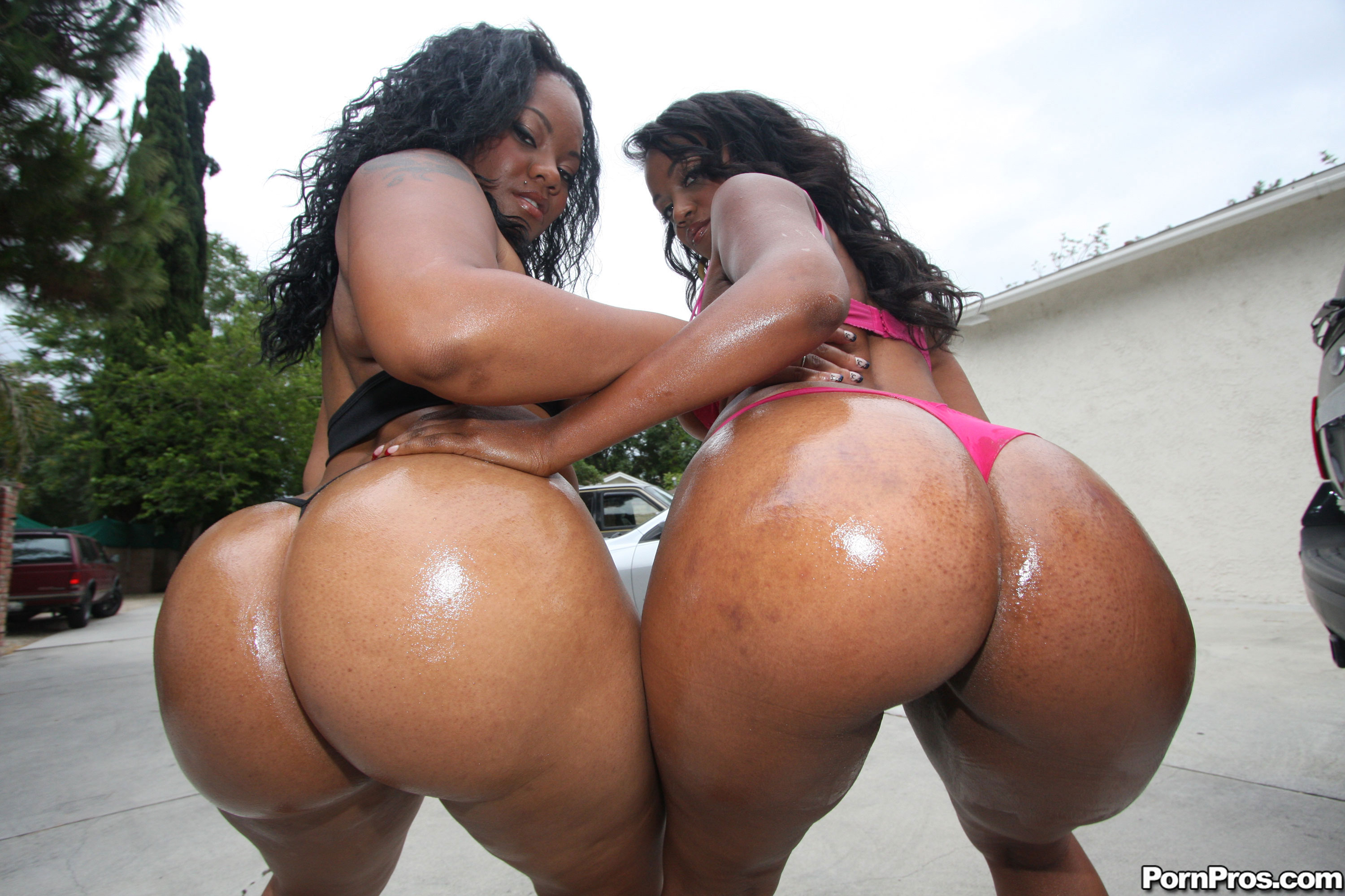 black porn bitches ass Big booty