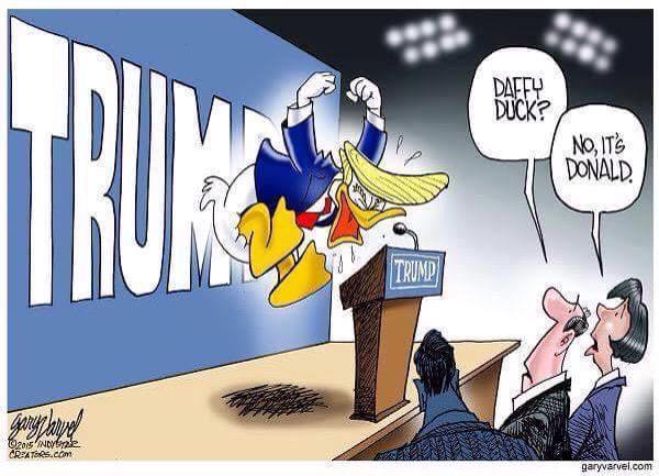 duck gay Donald